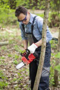 Mężczyzna wycinający nieduże drzewo pilarką