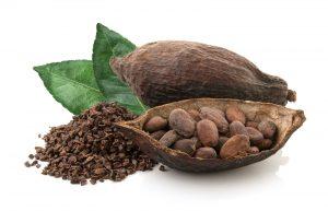Owoc i ziarna kakaowca